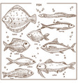 fish sketch species with names isolated vector image vector image