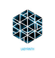 hexagon volume labyrinth abstract logo vector image