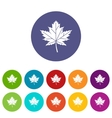 Maple leaf set icons vector image vector image