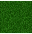 Perfect lawn background Green grass Beautiful vector image