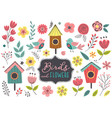 set isolated spring birds and flowers vector image vector image