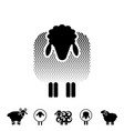 sheep or ram icon logo template pictogram vector image vector image