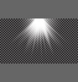spotlight light effect vector image vector image