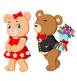 two cute bears using the best costume vector image vector image