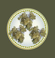 white grapes bunches on plate vector image