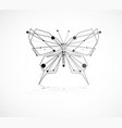 abstract beautiful butterfly vector image vector image