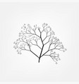 anchor tree vector image