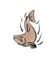 Angry Salmon Fish Jumping Retro vector image vector image
