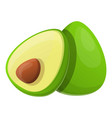 avocado fruit icon cartoon style vector image