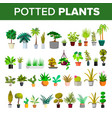 floral green home decorative houseplant set vector image