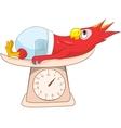 Parrot Schoolboy vector image