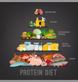 protein diet vertical poster vector image