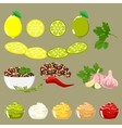 Set of spices and ingredients vector image vector image