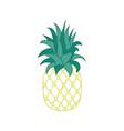 tropical fruit pineapple vector image vector image
