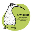 Cartoon kiwi bird vector image