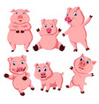 collection of the pink pig vector image vector image