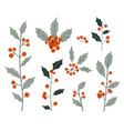 hand drawn decorative christmas holly plant vector image