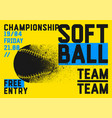 softball championship typographical style poster vector image