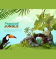tropical jungle toucan garden composition poster vector image vector image