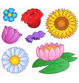 various flowers set vector image
