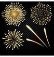 Bright fireworks in honor of the holiday on a vector image