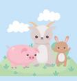 cute little rabbit goat and pig grass cartoon vector image vector image