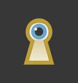 eye in keyhole flat design icon vector image