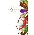 spice vertical banner vector image vector image