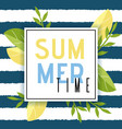 summer time greeting in frame flat vector image vector image