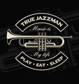 trumpet on the dark background vector image vector image