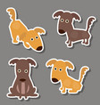 set of cute dogs stickers set of cute dogs vector image