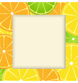 Citrus fruit frame background vector image vector image