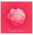 flower of Carnation vector image vector image