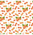 seamless pattern with of peanuts vector image