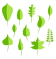 Spring green leaves in flat style set vector image vector image