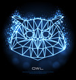abstract polygonal tirangle bird owl neon sign vector image