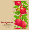 pomegranate branches pattern vector image vector image