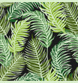 tropic plants floral seamless jungle pattern vector image vector image