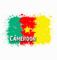 flag of cameroon from blots of paint vector image