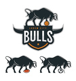 Bull mascot for sport teams vector image vector image