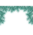 pine tree branches vector image vector image