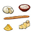 sketch dairy products and baguette set vector image