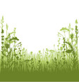 herbal silhouette background vector image