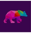 Bear color polygon rainbow in low poly style vector image vector image