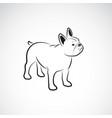 bulldog design on white background pet animals vector image vector image