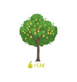 pear garden fruit tree with name vector image vector image