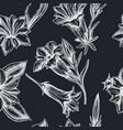 seamless pattern with hand drawn chalk gentiana vector image vector image