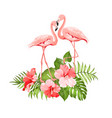 tropical background summer vector image vector image