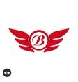 Wings logo element template designemblem vector image