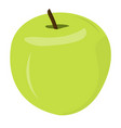 isolated green apple vector image